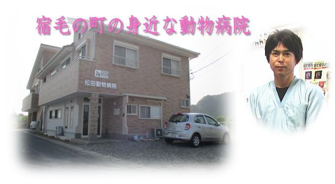 松田 動物 病院